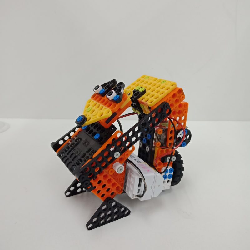 Dream World Robotics Students Motor Racoon Robot